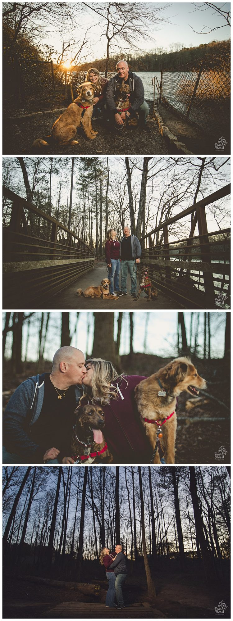 Happy couple posing with their dogs during engagement session at Jones Bridge Park.